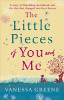 The Little Pieces Of You And Me : tale of female friendship, love...