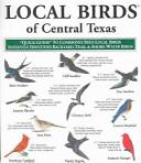 Local Birds of Central Texas
