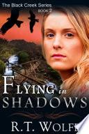 Flying in Shadows  The Black Creek Series  Book 2