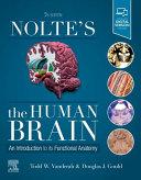 Nolte S The Human Brain