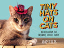 Tiny Hats on Cats