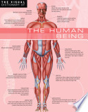 The Visual Dictionary of The Human Being   The Human Being