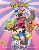 Pokémon X•Y