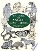 Big Book of Animal Illustrations