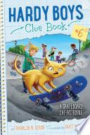 A Skateboard Cat astrophe