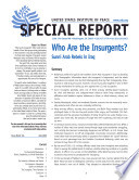 Who Are the Insurgents