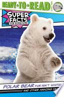 Polar Bear Fur Isn't White!