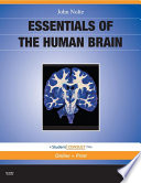 Essentials of the Human Brain E Book