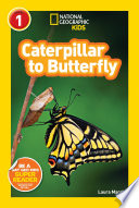 National Geographic Readers  Caterpillar to Butterfly