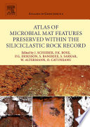 Atlas of Microbial Mat Features Preserved within the Siliciclastic Rock Record