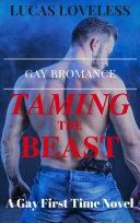 Gay Bromance: