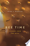 Bee Time Writes Bee Time Presents His Reflections