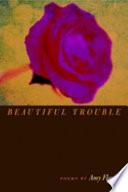 Beautiful Trouble Book PDF