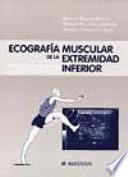 Ecograf  a muscular de la extremidad inferior