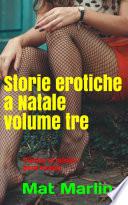 Storie erotiche a Natale volume tre  porn stories