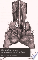 The anatomy of the muscular system of the horse
