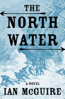 cover img of The North Water