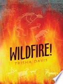 download ebook wildfire! pdf epub