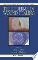 The Epidermis in Wound Healing
