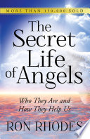 The Secret Life of Angels With Biblical Accounts How Can