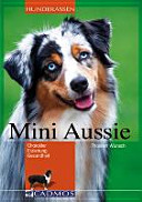 Mini-Aussie
