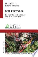 Soft Innovation. La risposta delle imprese alle sfide della crisi