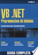 VB NET  Programmazione dei Database