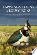 Lapwings  Loons and Lousy Jacks