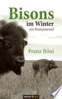 Bisons im Winter