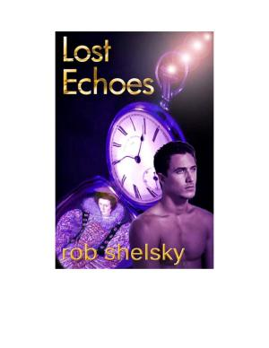 Lost Echoes - ISBN:9781452316604