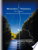 Mouches Volantes Eye Floaters As Shining Structure Of Consciousness
