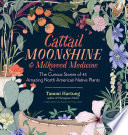 Cattail Moonshine   Milkweed Medicine