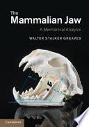 The Mammalian Jaw