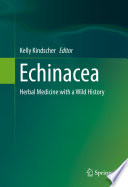 Echinacea Of Most Popular Medicinal Plants Echinacea A Species That