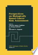 Perspectives on Biologically Based Cancer Risk Assessment