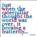 just-when-the-caterpillar-journal