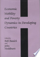 Economic Mobility and Poverty Dynamics in Developing Countries
