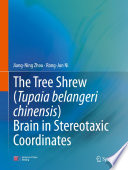 The Tree Shrew Tupaia Belangeri Chinensis Brain In Stereotaxic Coordinates