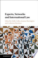 Experts  Networks and International Law