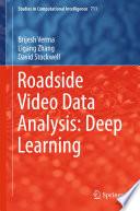 Roadside Video Data Analysis