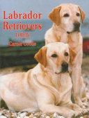 Labrador Retrievers Today Standards Discusses A Labrador Retriever S Care Requirements