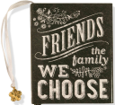Friends  The Family We Choose  Mini Book