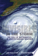 Invisible in the Storm Pdf/ePub eBook