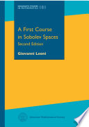 A First Course In Sobolev Spaces Second Edition book