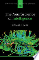 The Neuroscience Of Intelligence
