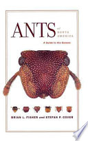 Ants of North America Met By A Profound Contribution The First Such