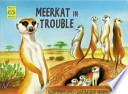Meerkat in Trouble