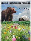 Horoskop-Bilder von Arne Vierlinger
