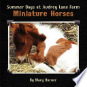 Summer Days at Audrey Lane Farm