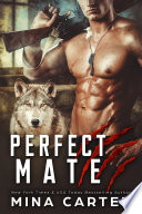 Perfect Mate Soldier With A Dark Secret Lillian S